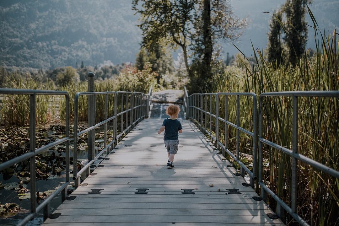 Small child walks along bridge in the spring